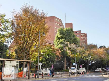三鷹ロイヤルハイツ 4階<br>~駅徒歩1分・玉川上水沿いに佇むマンション~