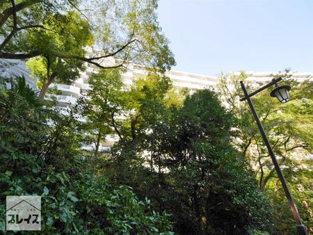 メゾン井の頭4階<br>~バルコニーから井の頭恩賜公園~
